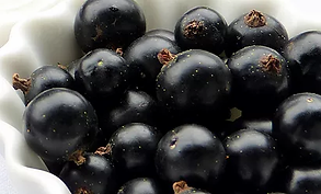Black Currants.webp