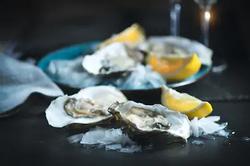 Fresh Coffin Bay Oysters