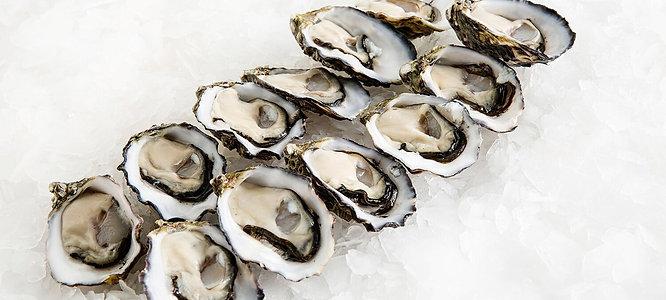 Dozen Pacific Oysters