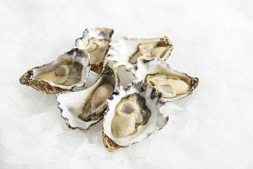 Half Dozen Pacific Oysters
