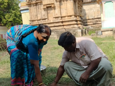 Tree Plantation at Temple - Shri Agatheewarar Temple Thirumanakkal