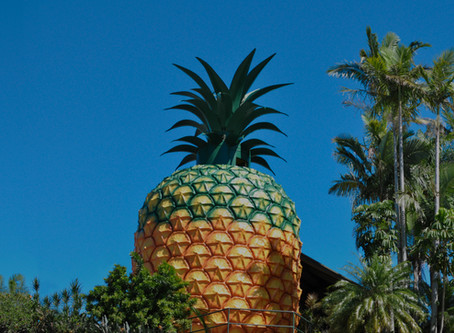 The Big Pineapple's $116 million revival