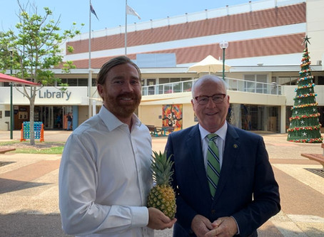 Council approval of the site master plan sweetens Big Pineapple renewal