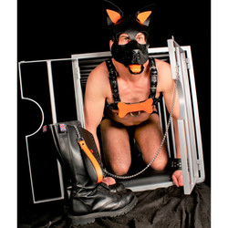 puppy-os-en-cuir-orange (2).jpg