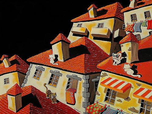 Notte sui tetti