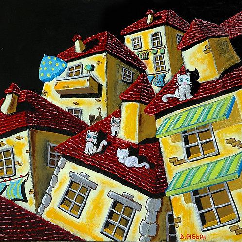Gatti notturni sui tetti
