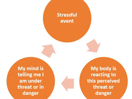 Understanding and Managing Stress and Anxiety