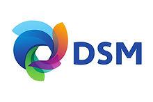 DSM-logo.jpg