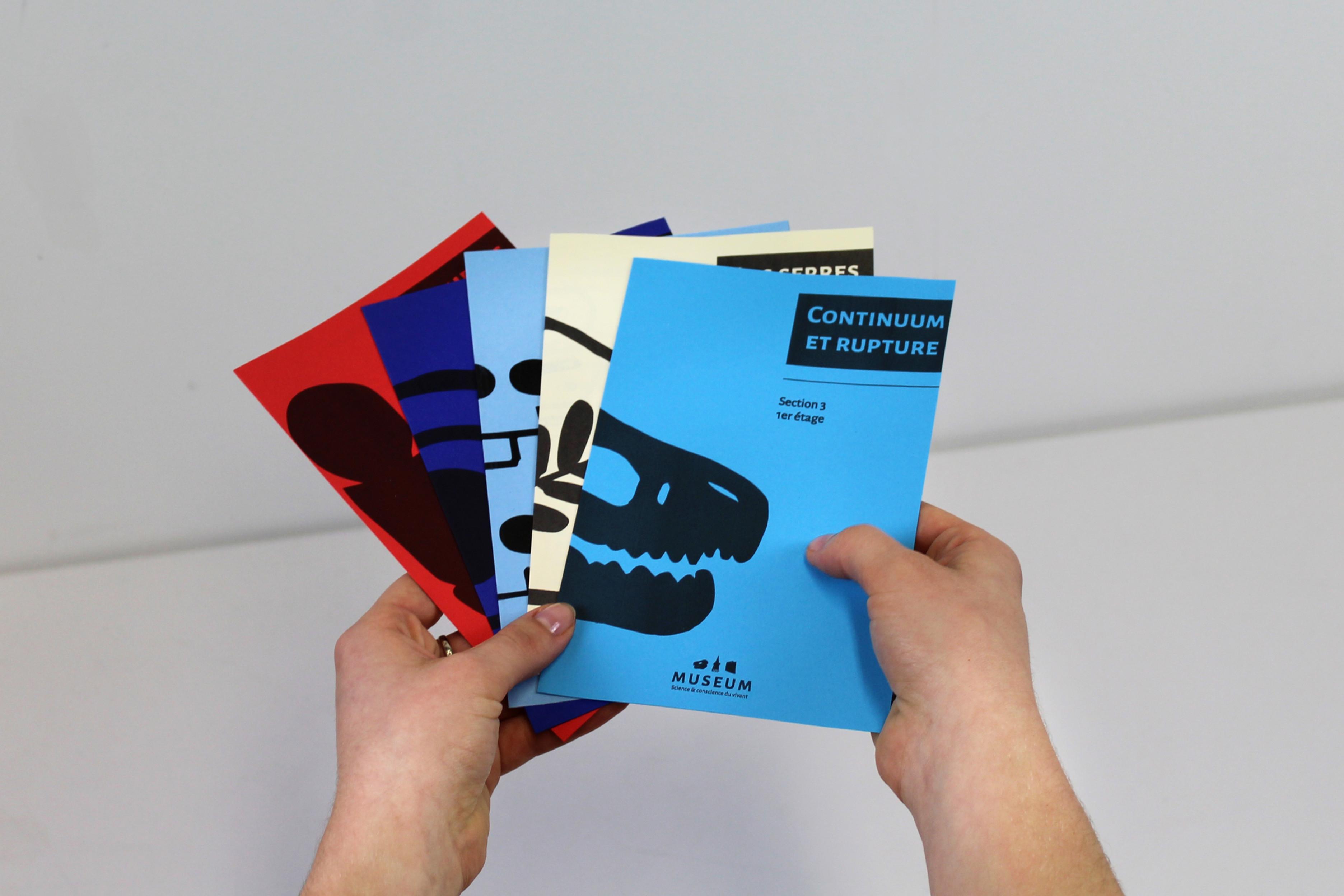 Dsaa Design Produit Toulouse designer graphique   elora michel design   occitanie