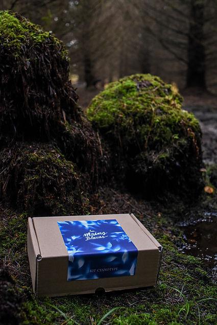 kit les mains bleues_forêt1.jpg