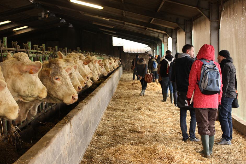 The farm at Evaux les bains