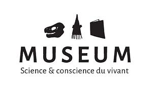 Museum Toulouse, identité