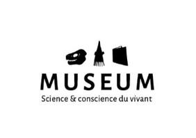 Museum Toulouse (fictif)