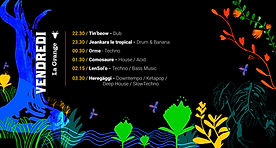 programmation graphique de BB la fiesta festival