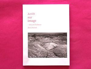 edition, photographie, arret sur image, rose, editorial