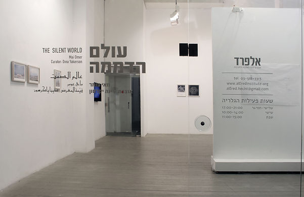 Dolphinarium Project, מאי עומר, Mai Omer artist curator
