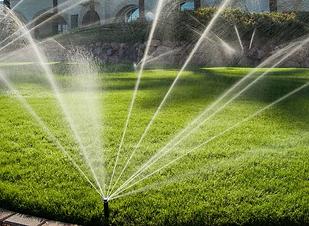 irrigation1.png