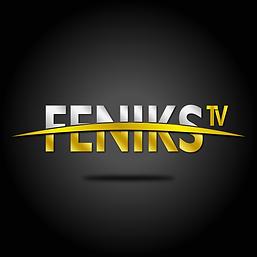 FENIKS TV.png