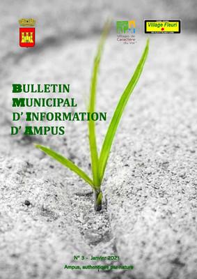 BULLETIN MUNICIPAL N°3 Janvier 2021