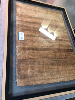 Large Papyrus Between Glass Behind
