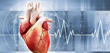 Cardiologo en Vigo Elisa Blanco González