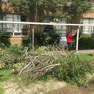 Campus Clean Up Day