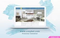 Site Web de Coxybel Invest