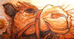 "Illustration ""Chameau"""
