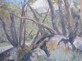 Kinross Arts Centre - Trees and Rocks at Perisher NSW