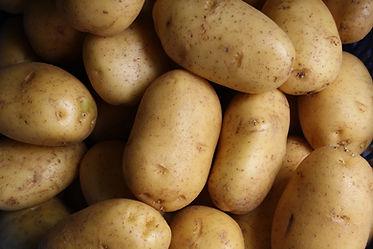Potato Photo by Lars Blankers on Unsplas
