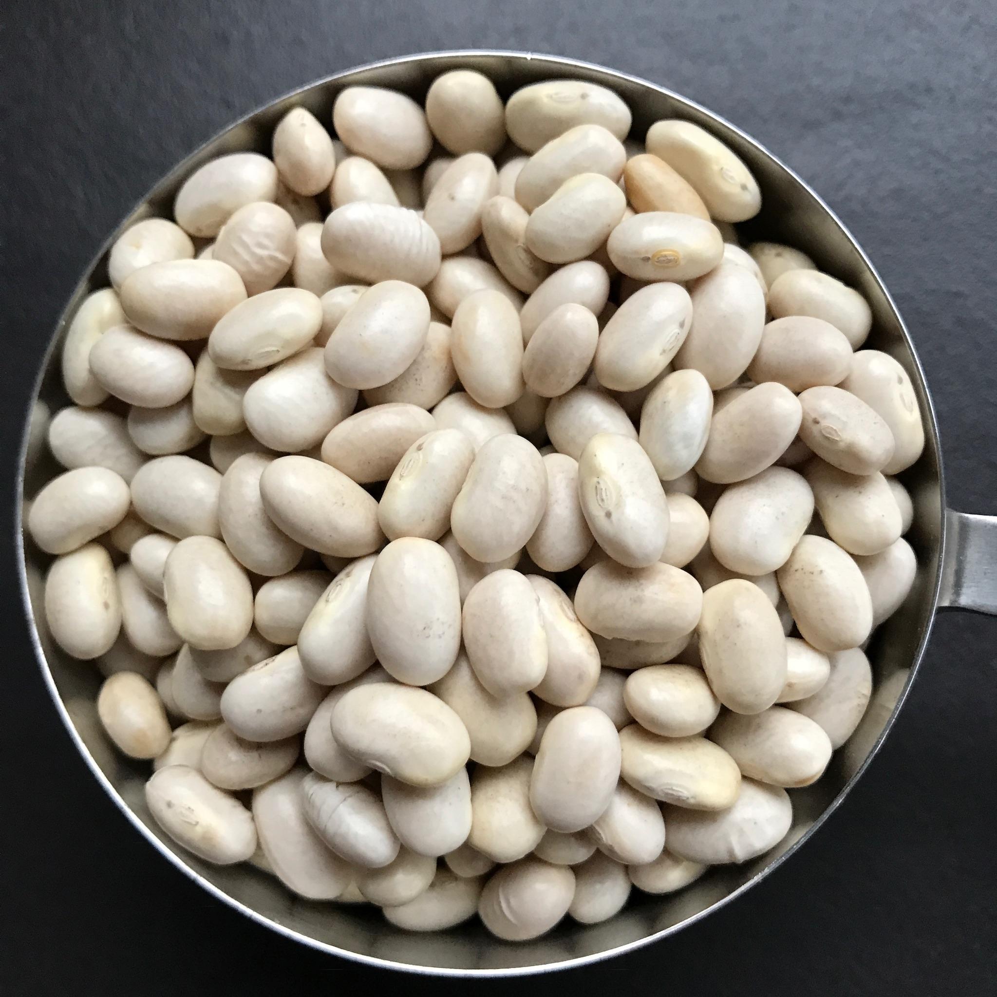 witte bonen