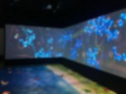 proiettore pavimento interattivo;  (2).j