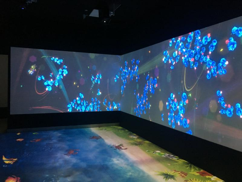 proiettore pavimento interattivo;  (2)