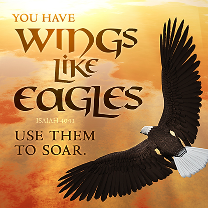 Eagles Wings Soaring