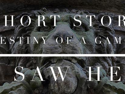 Short Story| Destiny of a Gamer: I Saw Her