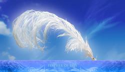 FeatherOfKriiGallery