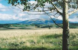 New Mexico land