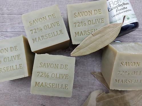 DS10a 72%瓊崖海棠馬賽皂 Tamanu Marseille Soap