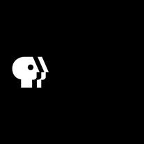 pbs-1-logo-png-transparent.png