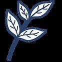 Tea Leaf Illustration