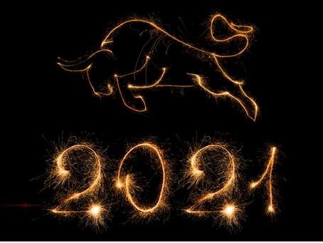 Lunar New Year: Metal Ox