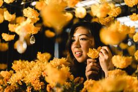 Golden Flowers 2