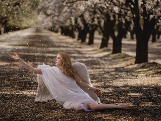Bakersfield Almond flower photo shoot