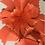Thumbnail: CHILLI in orange leather