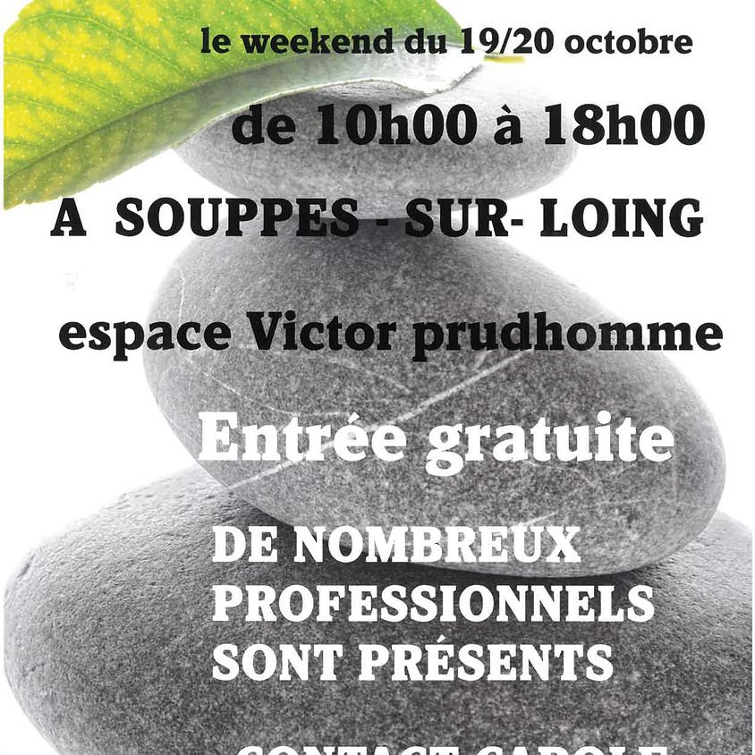 Salon du Bien-être, Santé et Bio: samedi 19 et dimanche 20 octobre
