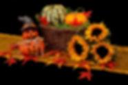 autumn-20461_1280.jpg