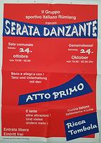 FDS Plakat.png