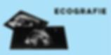 immagine-icona-pagina-sito-ecografie.png