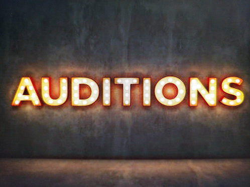 MASTER YOUR AUDITION