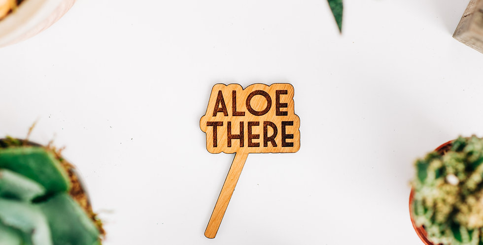 Aloe There Plant Stake